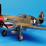 Curtiss P-40E, Amtech1/48